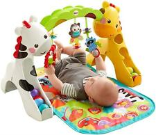 Fisher Price Newborn To Toddler Play Gym