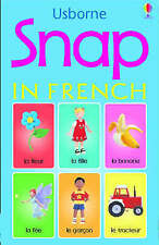 Snap In French Cards Usborne 9780746062579