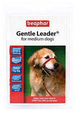 BEAPHAR GENTLE LEADER FOR MEDIUM DOGS, M, RED LEAD
