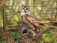 LIFE SIZE EAGLE OWL Ultra Realistic Home & Garden Ornament. Vivid Arts. Stunning
