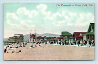 Ocean Park, CA - EARLY PROMENADE BEACH SCENE & BATHERS - POSTCARD