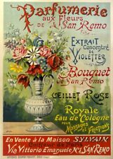 Vintage Barbershop & Salon Posters SAN REMO PARFUMERIE, France, 1900's
