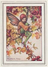 CICELY MARY BARKER c1930 THE HAWTHORN FAIRY Painting Vintage Art Book Print