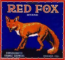 Orange County California Red Fox Orange Citrus Fruit Crate Label Art Print