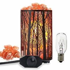 Salt Lamps Forest Night Lights Retro Metal Basket Lamp Pink LED Corded Electric
