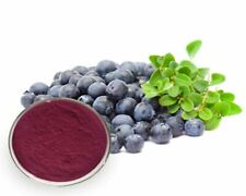 Freeze-Dried Blueberry forest POWDER - 100% Natural-14g.(1/2oz.)FREE SHIPPING