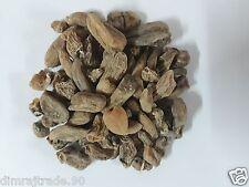 Salab Misri/Mishri,Salep,Orchis mascula 60gm for sexual wellness 100% Natural