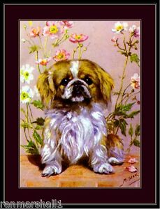 English Print Pekingese Puppy Dog Puppies Dogs Vintage Art Picture Poster