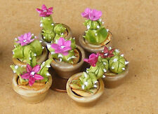 1:12 Scala Singolo Piccolo Rosa Ceramica Cactus IN A Pentola Tumdee Miniatura P