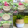 Seagrass Belly Basket Flower Plants Pot Laundry Storage Foldable Nursery Decor