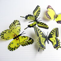 12 Pack Butterflies - Yellowgreen- 5 to 6 cm - Cakes, Weddings, Crafts, Cards,