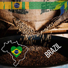 BRAZIL 17/18 UNROASTED-GREEN COFFEE BEANS