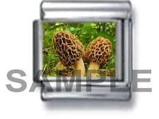 MOREL MUSHROOMS 9MM ITALIAN PHOTO CHARM LINK forest mushroom hunt woods