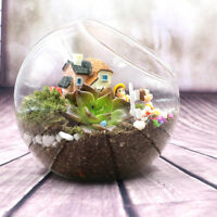 Globe Glass Ball Planter Vase Flower Plant Pot Terrarium Container Tabletop T