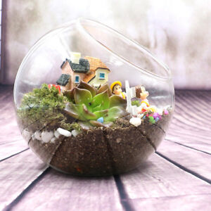 Globe Glass Ball Vase Succulent Plant Terrarium Pot Decor Flower Air Hanging