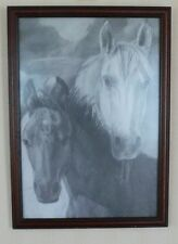 Etching of Two Horses (Print) by Ella Smuki.Under Glass 33 x 43cm x 960g