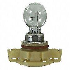 Wagner Lighting 2504 Multi Purpose Light Bulb Rear