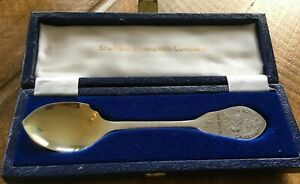 Solid silver Charles and Diana Royal Wedding spoon hallmarked