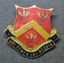 Vintage Luton school pin badge