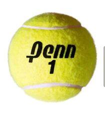 Inflatable Penn 9 3/8 Inch Jumbo Tennis Ball (580002)