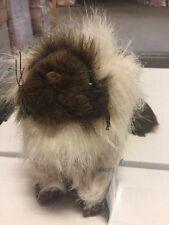 Webkinz Himalayan Hm165 Plush Animal With Secret Code For Website Ganz Cat