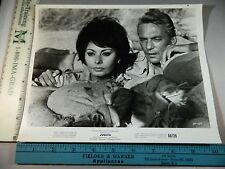 Rare Original Vtg 1965 Sophia Loren Peter Finch Judith Movie Photo Still