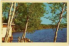 A cabin on a beautiful Minnesota lake Postcard