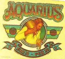 Original Aquarius Iron On Transfer Glitter