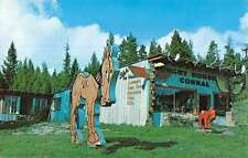Glacier National Park Montana Blakes Hunry Horse Corral Vintage Postcard K48378