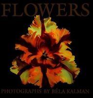 Flowers by Kalman, Bela