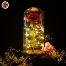 WR La bella y la bestia iluminaron Rose en el domo de cristal para San Valentín