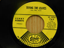 Kenny Roberts 45 Trying The Leaves bw Anytime   Starday VG+ Michigan