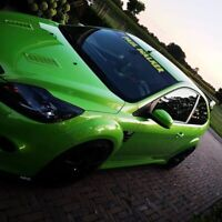 Focus Rs MK3 Gel-Embleme Inlay Front+Rear Free Choice of Color Green