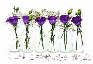 24x kleine MINI-TR-100 Weithals Vasen Glas Flasche Deko set Hochzeit Blumen