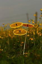 Cazador del Sol -Sonnenstrauss- Sonnenfänger - Suncatcher