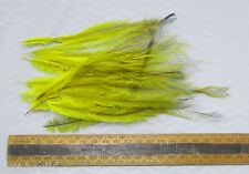 EMU FEATHERS DYED,,LEMON, tail small/medium