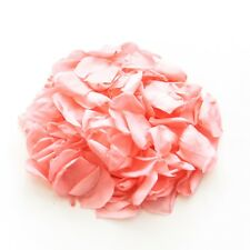 Salmon natural biodegradable rose petals for wedding confetti / decoration