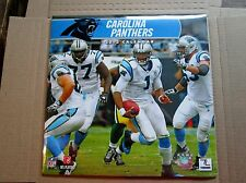 2013 Team Calendar Carolina Panthers NEW & SEALED (others available)