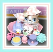 ❤️AUTHENTIC Littlest Pet Shop LPS #67 Gray White COLLIE Puppy Dog Skirt Bed❤️