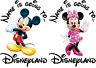 DISNEYLAND / WORLD IRON ON HEAT TRANSFER T SHIRT LOTS OF CHARACTERS PERSONALISED