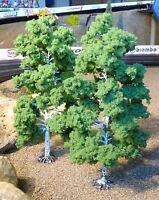 6-STÜCK Jordan Bäume LAUBBÄUME BIRKEN mit Fuß 18cm hoch zum SONDERPREIS     1B-3