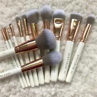 12/16 Pro Makeup Brushes Set Foundation Powder Eyeshadow Eyeliner Lip Brush Tool