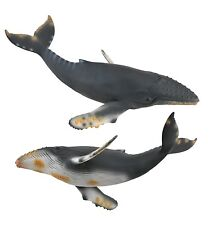 Megattera 21 cm Animali marini Collecta 88347