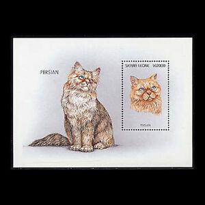 Sierra Leone, Sc #1894, MNH, 1996, S/S, Cats, Persian, IDD-F
