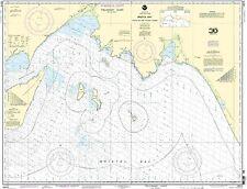NOAA Chart Bristol Bay-Togiak Bay and Walrus Islands 10th Edition 16315