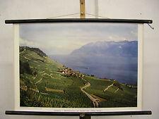 School Wall Picture Switzerland Wine Patio Lake Geneva Verey 75x50 Vintage Wall Chart