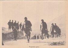A4162) WW2, GRECIA, COLONNA DI PRIGIONIERI GRECI.