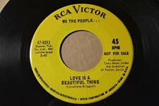 WE THE PEOPLE.. RCA Victor 47-9393 PROMO LOVE IS A BEAUTIFUL THING  -LISTEN