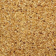 (EUR 1,68/kg) 2,5kg kanariensaat, nourriture pour oiseau Canaries PERRUCHE