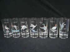 "7 NED SMITH DUCK HIGHBALL GLASSES TUMBLERS 5 1/2"" TALL"